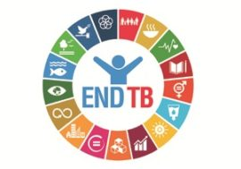 Webinar series on the Global Ministerial Conference on TB