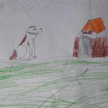 Рахим, 11 лет. Мечтает счастливо жить в своем доме, а его верный друг и собака Шелла всегда на страже!