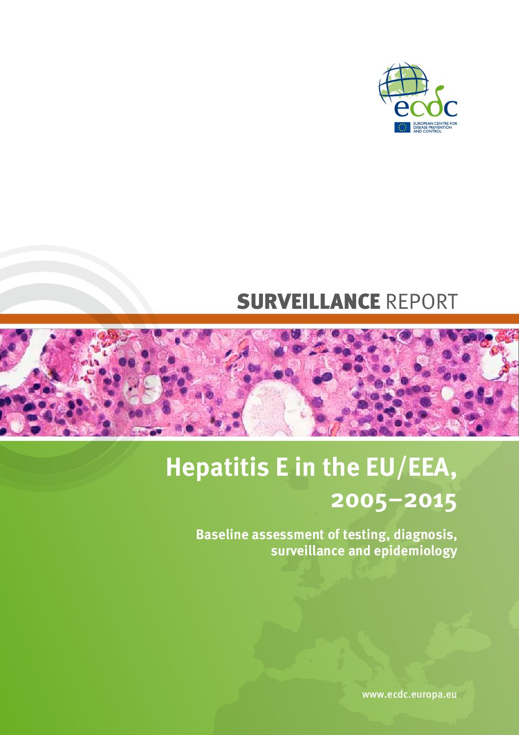 Hepatitis E in the EU/EEA, 2005–2015 Baseline assessment of testing, diagnosis, surveillance and epidemiology