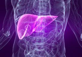 Вебинар «Жизнь с гепатитами: диета, спорт, солнце, беременность»