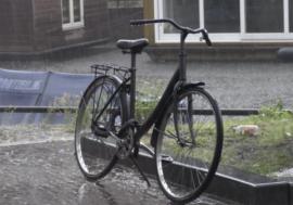 Проект EECA Cities. Амстердам, город без стигматизации (видео)