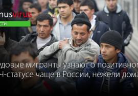 Трудовые мигранты узнают о позитивном ВИЧ-статусе чаще в России, нежели дома