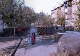 Отчет по трудовой миграции среди ЛУИН Кыргызстана и Таджикистана