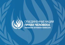 Заключительные замечания Комитета ООН против пыток по итогам отчета РФ. Неофициальный перевод