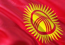 В Кыргызстане создадут попечительские советы при национальных медучреждениях