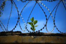 ВИЧ-позитивные заключенные в Литве получат бесплатное лечение